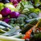 Egészséges táplálkozással  önmagunkért és a környezetünkért is.